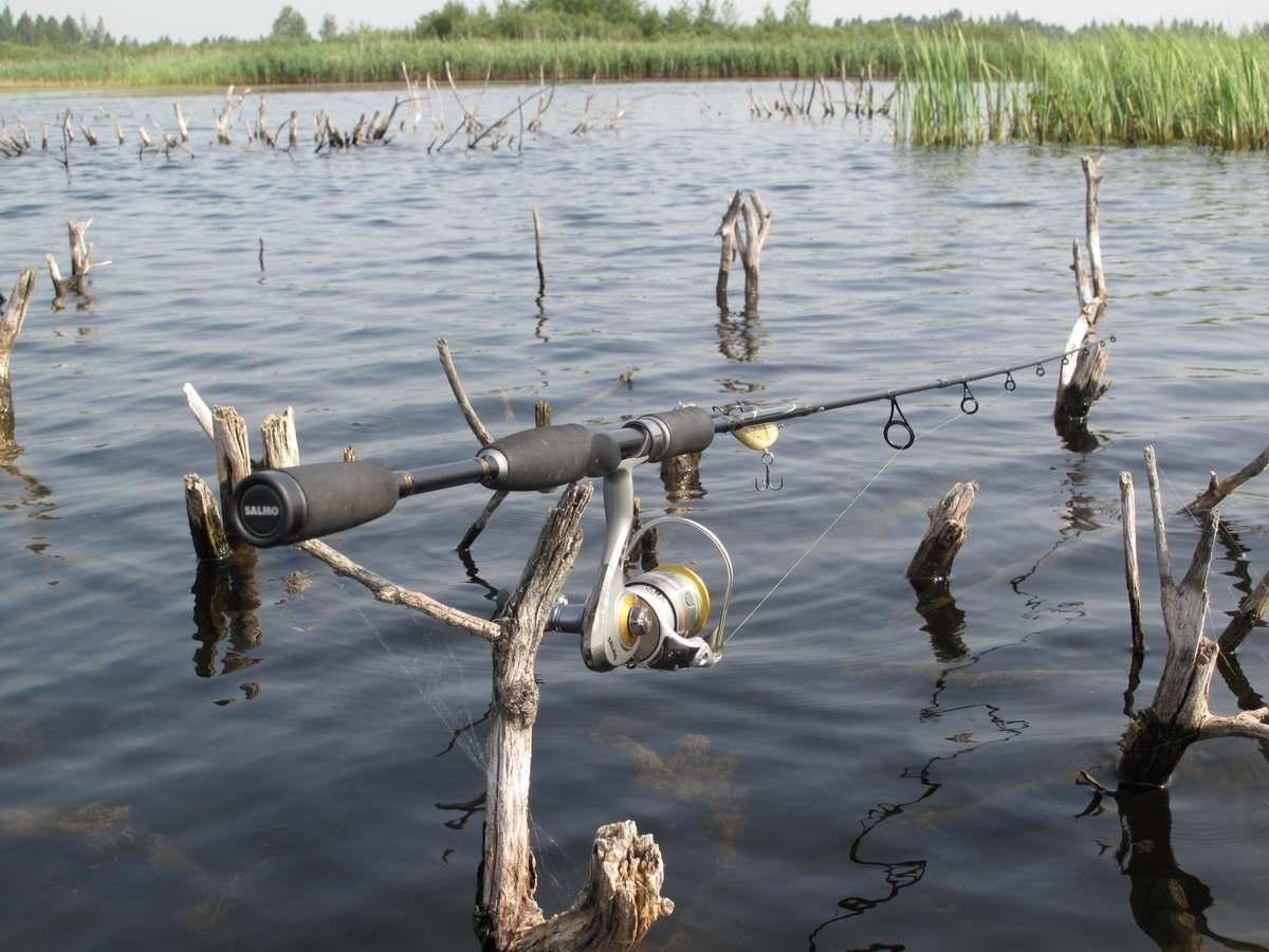 Как ловить в торфяных озерах